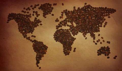 uprawy kawy na świecie