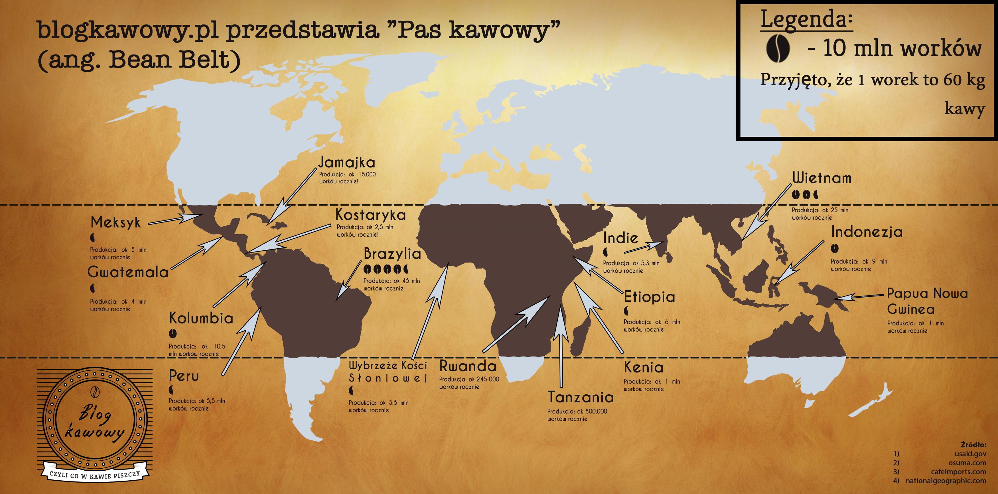 pas kawowy kawa infografika blog o kawie